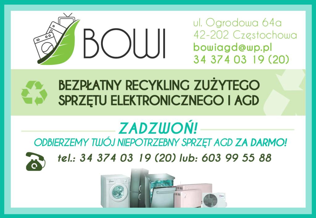 bowi_ver2_poziom copy